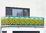 """Balkon-Sichtschutz WENKO """"Sonnenblume"""""""