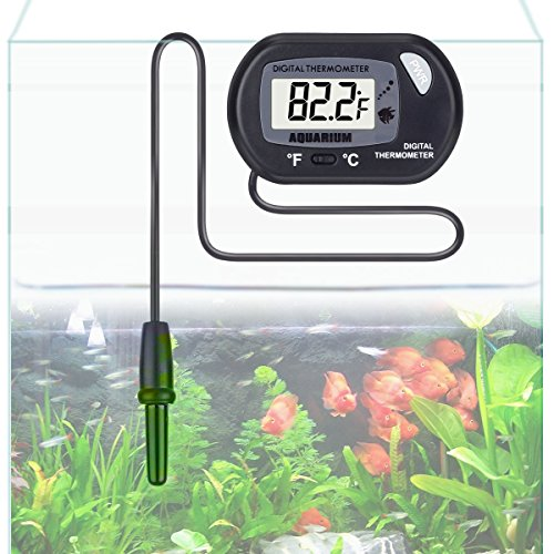 Aquarium thermometer risepro digital water thermometer for Tropical fish temperature