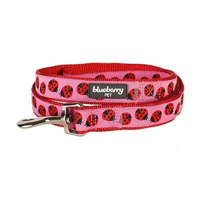 Blueberry Pet Pink Webbing Ladybug Designer Dog Leash