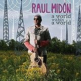 echange, troc Raul Midon - World Within World