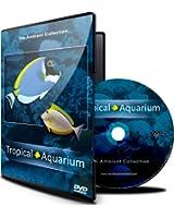 DVD Aquarium - avec scènes de poissons tropicaux en aquarium et musique reposante