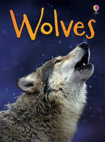 Wolves (Beginners)