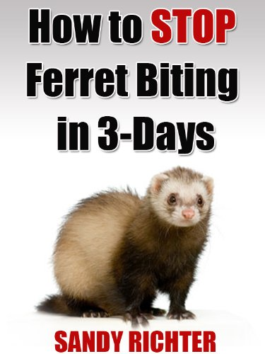 Ferret Biting (How to Stop Ferret Biting in 3-Days)