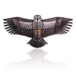 Flying Eagle Kite Kit by LIVERTOL High Quality, Strongest Bird-Shaped Flying Kite for Kids and Adults ~ 5 Foot Wingspan of Flying Eagle ~ Easy to Assemble, Fly, & Store with Carrying Case