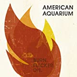 Songtexte von American Aquarium - Burn.Flicker.Die.