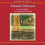 Schmidt Delivered | Louis Begley
