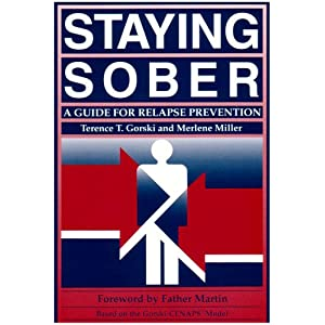 staying sober course review