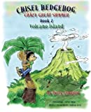 img - for Chisel Hedgehog Book 2 Volcano Island (Crazy Great Summer) (Volume 1) book / textbook / text book