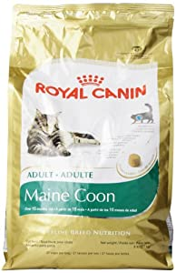Royal Canin Maine Coon Dry Cat Food, 6- Pound Bag