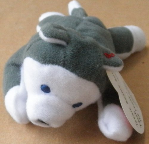 TY Teenie Beanie Babies Nook the Husky Plush Toy Stuffed Animal - 1