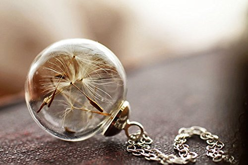 Wish Necklace Real Dandelion Dandelion Necklace , Real Dandelion Seed, Wish Necklace Nature Jewelery , Good Luck Charm, Bridesmaids Gift