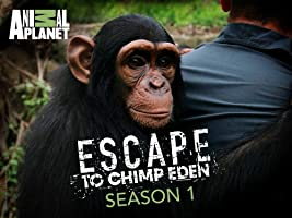 Escape to Chimp Eden Season 1