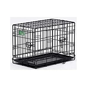 Midwest iCrate Single-Door Pet Crate by Amazon.com, LLC *** KEEP PORules ACTIVE ***