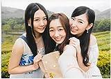 AKB48 公式生写真 ハロウィン・ナイト 店舗特典 グループショップ 【古畑奈和、須田亜香里、大矢真那】