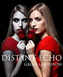 A Distant Echo: Book 1 (Grims Labyrinth Series)