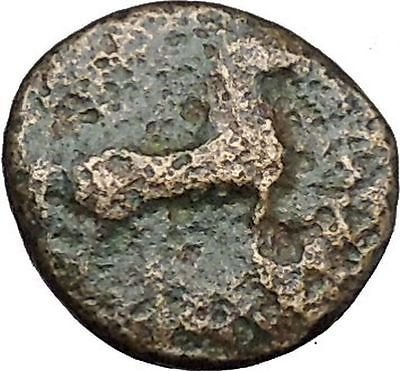 Authentic Ancient Greek City Coin 350-200BC Horse Trident i50266