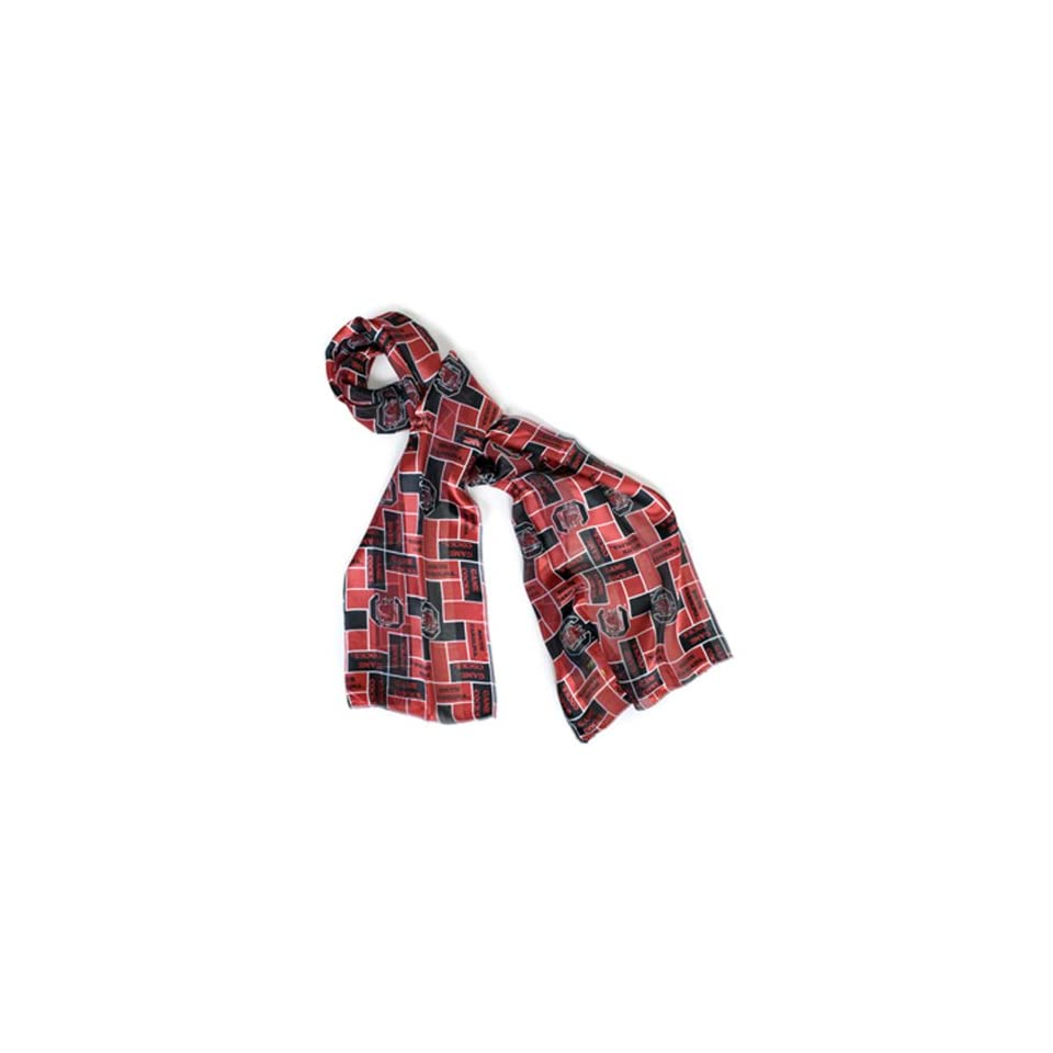 Official NCAA South Carolina Gamecocks Campus Walk Sheer Satin Scarf