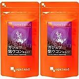 お徳用ガジュツ紫うこん粒 (540粒/約6ヶ月分)【123000110613102】