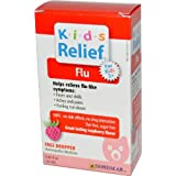 Homeolab USA Kids 0-9 Flu Relief Raspberry -- 0.85 fl oz