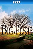 Big Fish [HD]