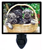 Dog Night Light - Miniature Schnauzer Puppies LED NIGHT LIGHT