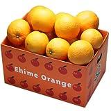愛媛産ネーブル3kg 大きさ不揃い,数お任せの訳あり品,国産品 フルーツ 果物 通販