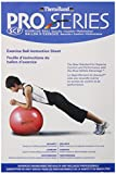 Thera-Band Standard Exercise Balls - Red, 21