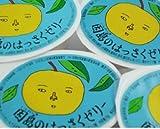 【ご家庭用お買い得セット】 因島産八朔の果肉入り ゼリー78g  【10個】
