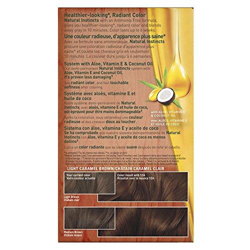 clairol natural instincts 6bz 12a navajo bronze light. Black Bedroom Furniture Sets. Home Design Ideas