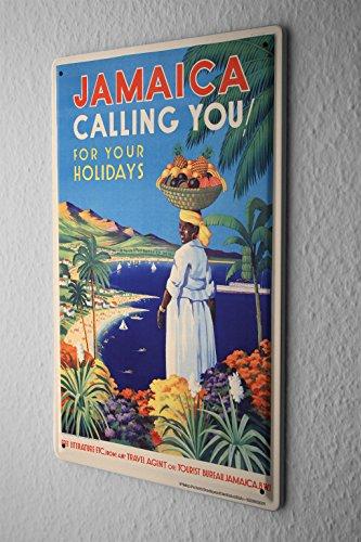 Cartello Targa In Metallo Tin Viaggio Mondo Giamaica mare vacanza palma cesto di frutta Piastra Decorativa 20X30 cm