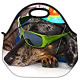 Snoogg A Dogs Life Having Fun At A Party Travel Outdoor Carry Lunch Bag Picnic Tote Box Container Zip Out Removable Carry Lunchbox Handle Tote Lunch Bag Food Bag For School Work Office