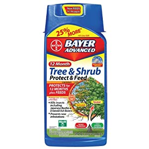 bayer tree and shrub protect and feed
