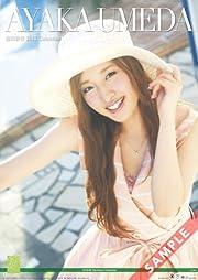 壁掛 AKB48-02梅田 彩佳 カレンダー 2013年