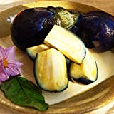 十全なす【季節限定】新潟県産 魚沼 黒十全ナス浅漬 美味しい茄子漬け(3玉入)×5袋