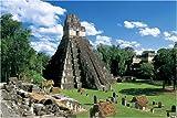 1000ピース ティカル国立公園-グアテマラ 11-117