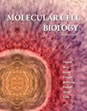 img - for Molecular Cell Biology (Lodish, Molecular Cell Biology) book / textbook / text book
