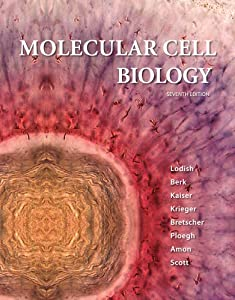 Download e-book Molecular Cell Biology