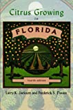 img - for Citrus Growing in Florida book / textbook / text book
