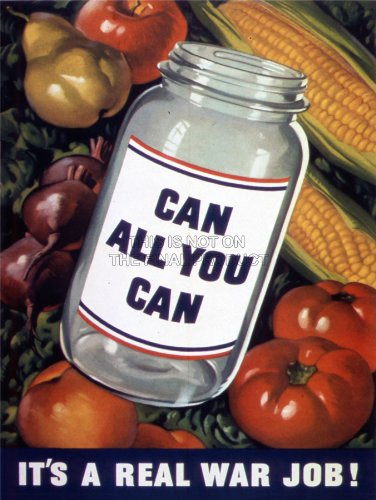 propaganda-war-wwii-usa-food-save-waste-can-jar-fruit-art-print-poster-affiche-30x40-cm-12x16-in-bb7