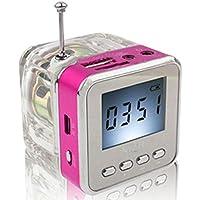 Haoponer Portable Mini Digital Display Screen Speaker USB Flash Drive Micro SD TF Card Music MP3 Player FM Radio... - B010AUWNFE