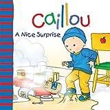 A Nice Surprise (Caillou 8x8)