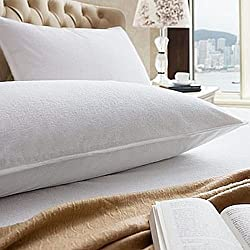 Linenwalas Waterproof and Dustproof Pillow Protectors Set of 2 Pcs- King Size(20