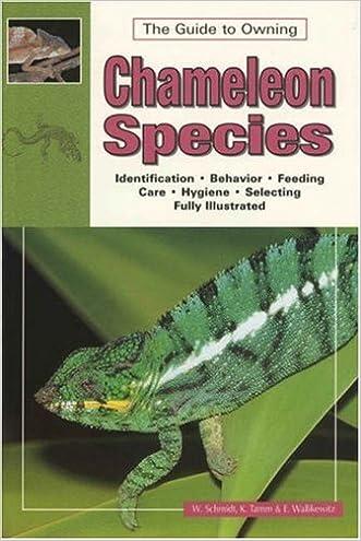 Chameleons Vol.1: Species