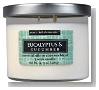 Candle-lite Essential Elements 14-3/4-Ounce 3 Wick Candle with Soy Wax, Eucalyptus and Cucumber