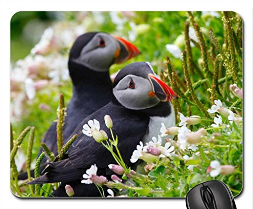 Puffin Mousepad