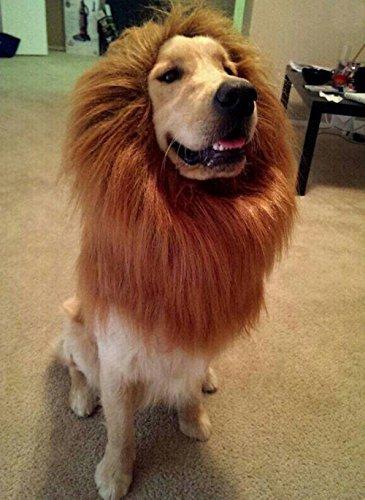 [Narrrowser Cosplay Lion Mane for Dog, Pet Costume Hair Clothes Festival Soft fur Hairpiece Party Fancy Lion Periwig Toupee Dress up Hair Neck Size (from 60cm to 80cm) For] (Dog Lion Costume Large)