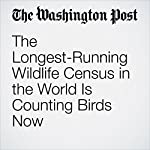 The Longest-Running Wildlife Census in the World Is Counting Birds Now | Nicholas Lund