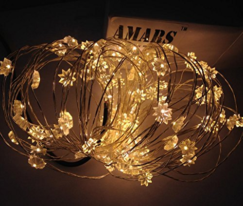 Amars(Tm) Dc 12V 10M/33Ft Eight-Pointed Flower Fairy Lights Warm White Led Copper String Lights For Xmas Christmas Party Wedding Festival With Power Adapter
