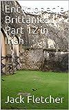 Encyclopedia Brittanica Part 12 in Irish (Irish Edition)