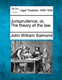 img - for Jurisprudence, or, The theory of the law. book / textbook / text book